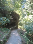 Paved Trail to Latourel Falls