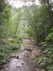 Spruce Run Campground - Oregon