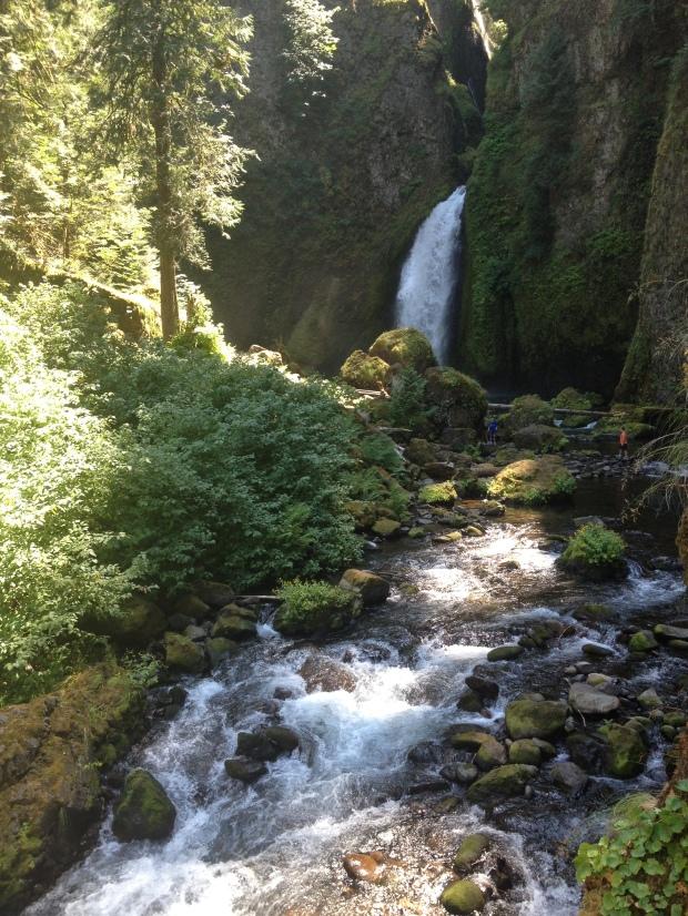 Wahclella Falls Day Trip