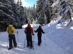 trillium lake snowshoe loop